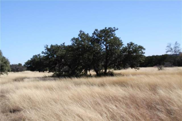 TBD W State Hwy 71, Spicewood, TX 78669 (#2716191) :: Green City Realty