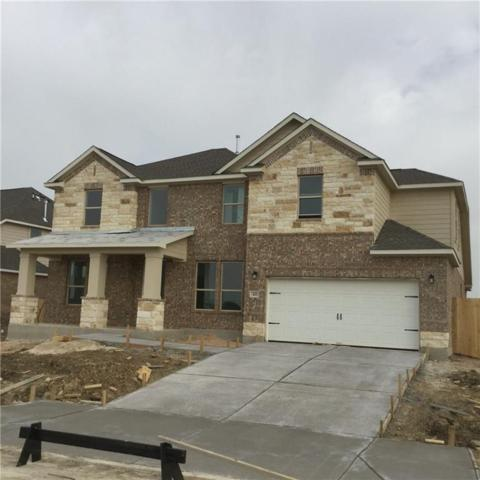 421 Windom Way, Georgetown, TX 78626 (#2745456) :: The Perry Henderson Group at Berkshire Hathaway Texas Realty