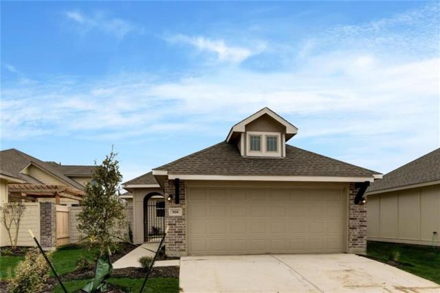 918 Silo, San Marcos, TX 78666 (#2794195) :: Ana Luxury Homes