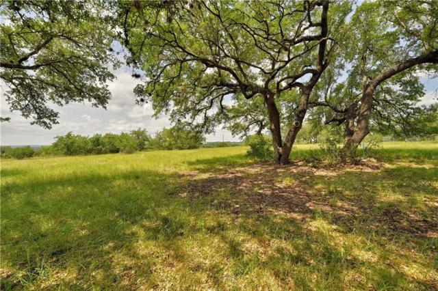 257 Coyote Trl, Round Mountain, TX 78663 (#2890500) :: Realty Executives - Town & Country