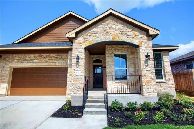 204 Wilderness Trl, Elgin, TX 78621 (#2901403) :: The ZinaSells Group