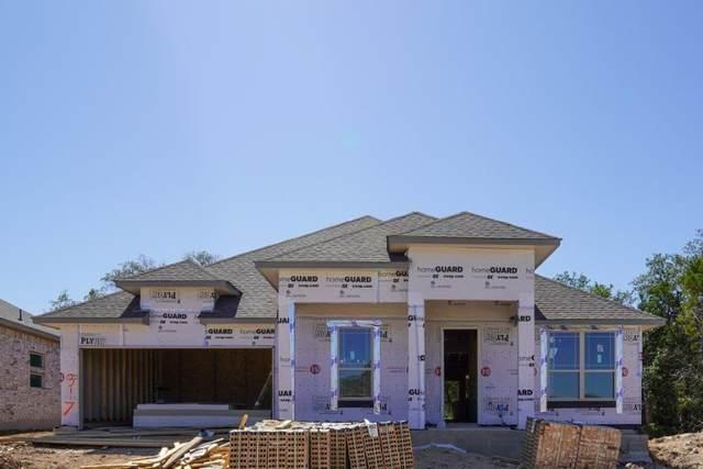 317 Coyote Creek Way, Kyle, TX 78640 (#2986506) :: Papasan Real Estate Team @ Keller Williams Realty