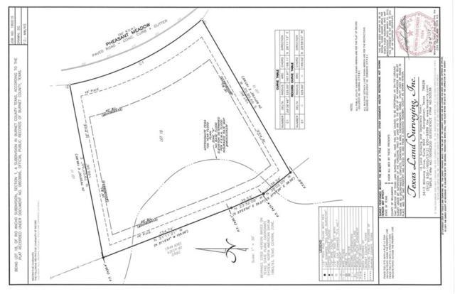 507 Pheasant Mdw, Liberty Hill, TX 78642 (#2990041) :: Watters International