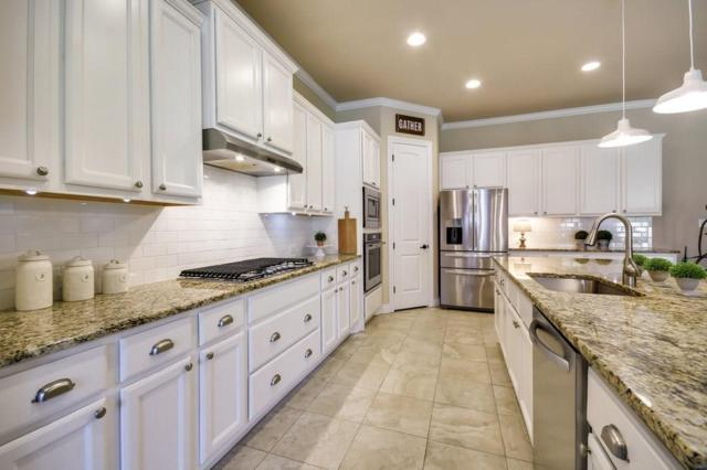 229 Standing Oak Dr, Georgetown, TX 78633 (#3096076) :: Forte Properties