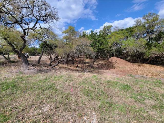 237 Lippizzan Ln, Driftwood, TX 78619 (#3107624) :: Papasan Real Estate Team @ Keller Williams Realty