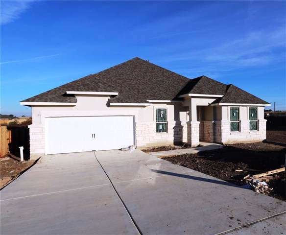 3545 De Soto Loop, Round Rock, TX 78665 (#3118930) :: The Perry Henderson Group at Berkshire Hathaway Texas Realty