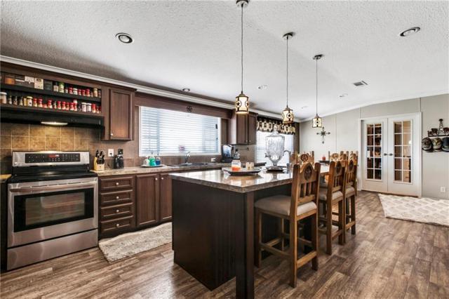 6730 E Fm 243, Bertram, TX 78605 (#3123972) :: Papasan Real Estate Team @ Keller Williams Realty
