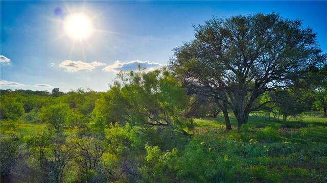 TBD Fm 574, Mullin, TX 76864 (#3151432) :: Papasan Real Estate Team @ Keller Williams Realty