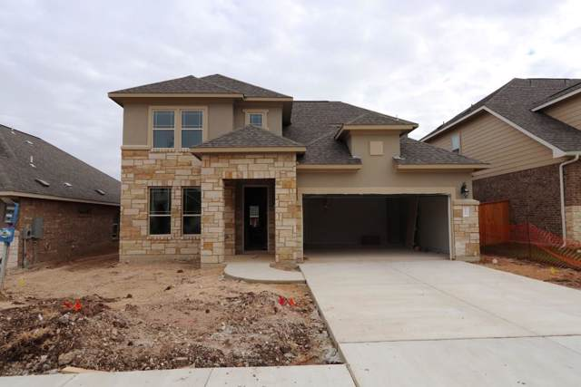 171 Danbark Dr, Buda, TX 78610 (#3188581) :: The Heyl Group at Keller Williams