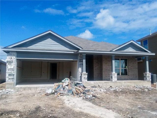 124 Sage Meadows Dr, San Marcos, TX 78666 (#3257734) :: Amanda Ponce Real Estate Team