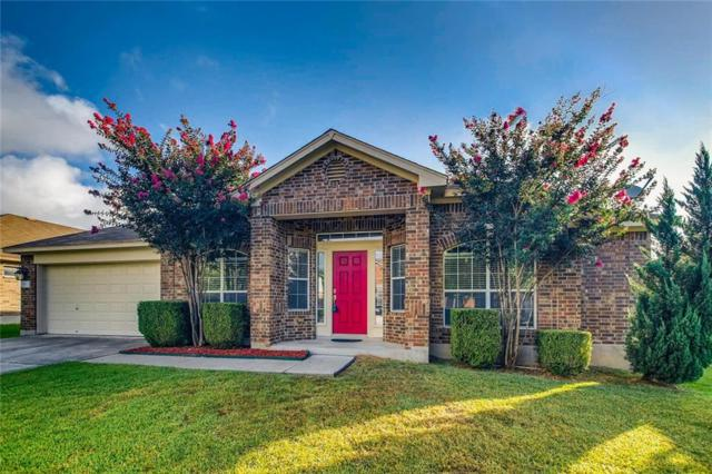 716 Abbeyglen Castle Dr, Pflugerville, TX 78660 (#3336707) :: The Perry Henderson Group at Berkshire Hathaway Texas Realty