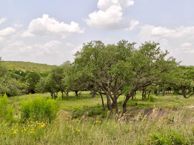 209 N Canyonwood Dr, Dripping Springs, TX 78620 (#3337623) :: Watters International