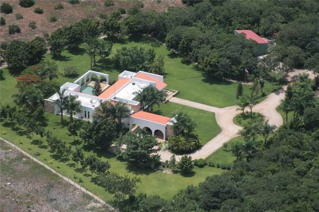 262 Tablaje 262 S/N C.P. 9785, Out of State, YU 00000 (#3422097) :: Papasan Real Estate Team @ Keller Williams Realty
