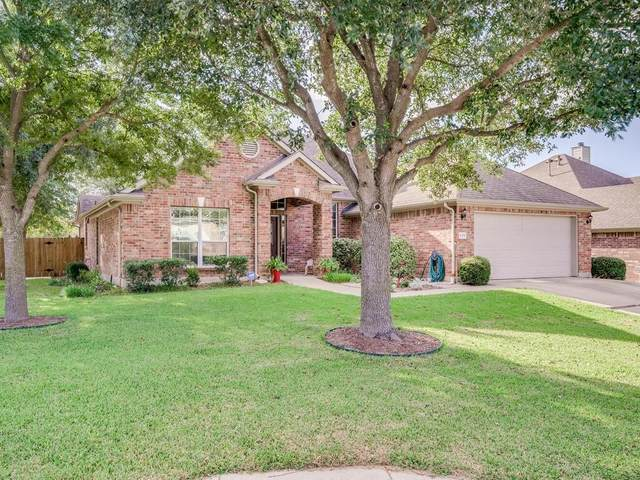 125 Amber Ash Dr, Kyle, TX 78640 (#3511376) :: The Summers Group