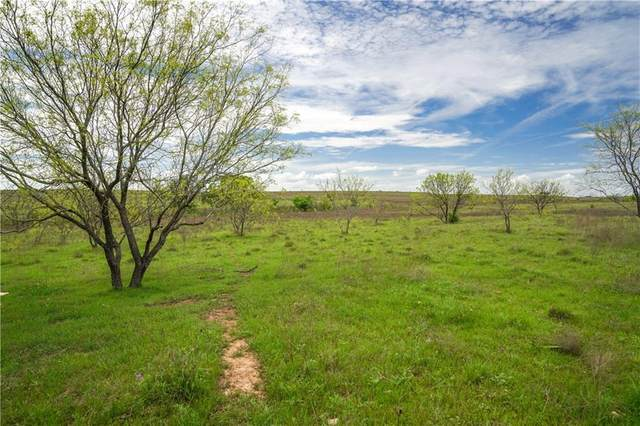 272 County Road 2323 #76.19, Lometa, TX 76853 (#3525188) :: Ben Kinney Real Estate Team