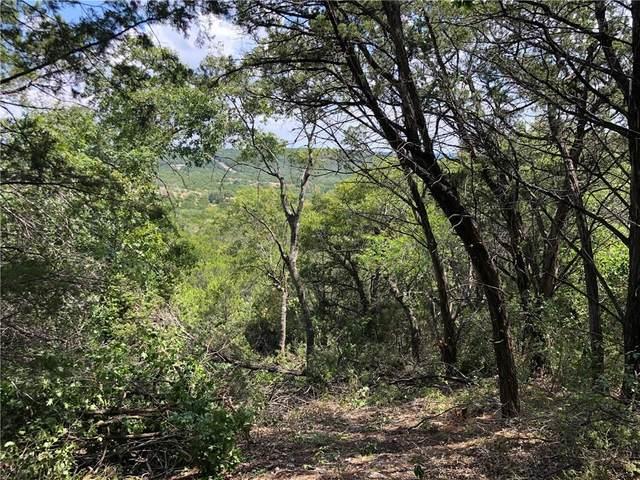 8601 Bar K Ranch Rd, Lago Vista, TX 78645 (#3536340) :: Azuri Group | All City Real Estate