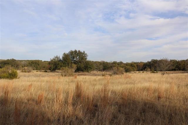 Lot 10 Old Marble Falls Rd, Round Mountain, TX 78663 (#3633070) :: Papasan Real Estate Team @ Keller Williams Realty