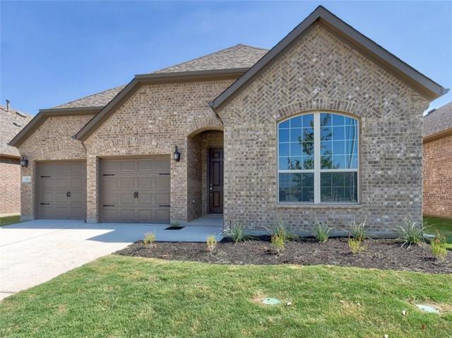 524 Mistflower Springs Dr, Leander, TX 78641 (#3661732) :: The Perry Henderson Group at Berkshire Hathaway Texas Realty