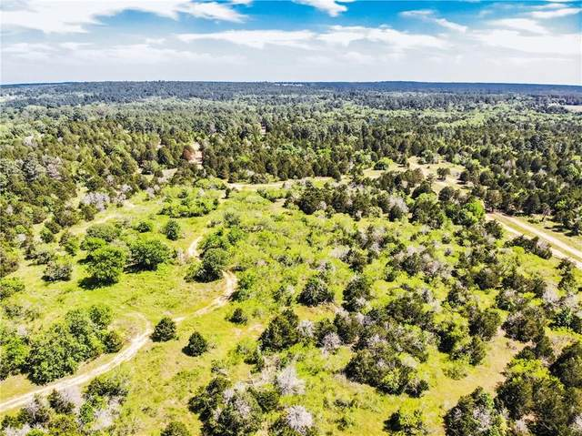 TBD 18 acres Herron Trl, Mcdade, TX 78650 (#3720326) :: 12 Points Group