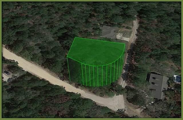 102 Lamaloa Ln, Bastrop, TX 78602 (#3754534) :: Papasan Real Estate Team @ Keller Williams Realty