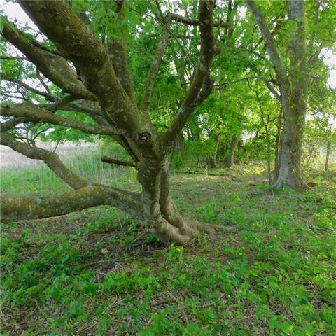 Lot 13 - 16 County Road 417, Thorndale, TX 76577 (#3817858) :: Watters International