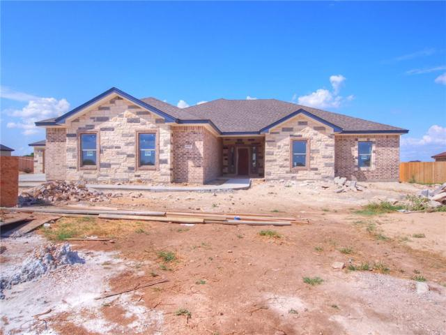 4332 Green Creek Dr, Salado, TX 76571 (#3818625) :: The Heyl Group at Keller Williams