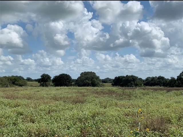 4131 County Road 121, Nixon, TX 78140 (#3920945) :: Papasan Real Estate Team @ Keller Williams Realty