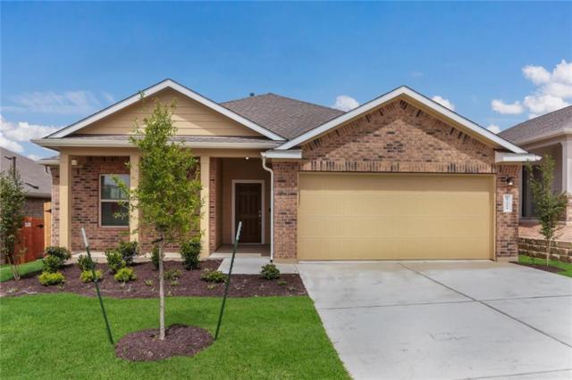 15404 Summer Ray Dr, Del Valle, TX 78617 (#3921540) :: The Heyl Group at Keller Williams