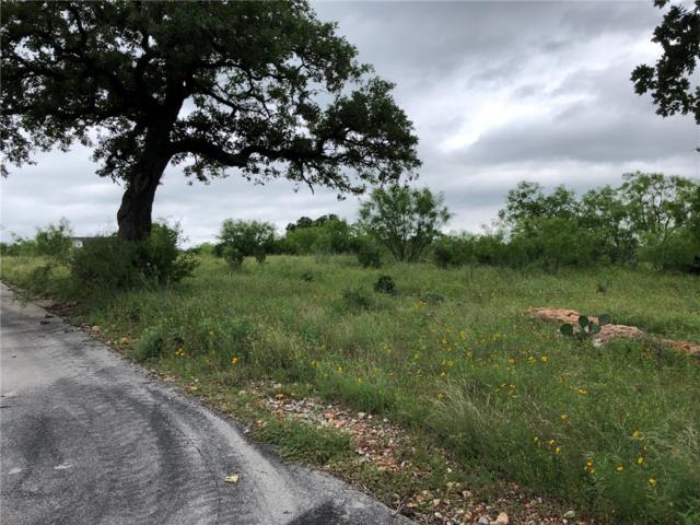 Lot 2B Schoolhouse Ln, Spicewood, TX 78669 (#4006534) :: The Perry Henderson Group at Berkshire Hathaway Texas Realty