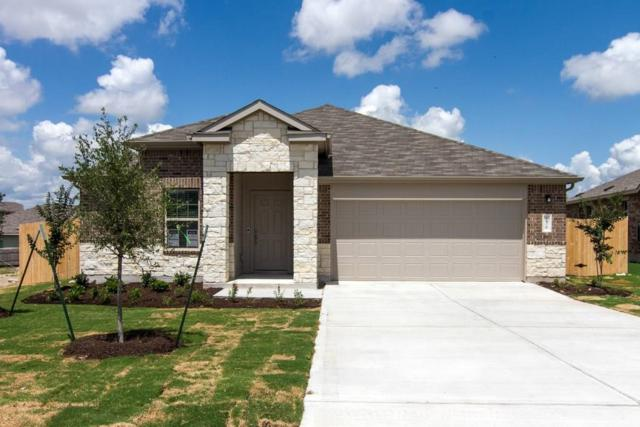 238 Tanzanite Cir, Buda, TX 78610 (#4021074) :: NewHomePrograms.com LLC