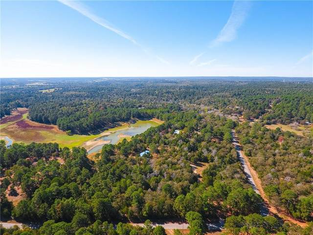 730 Pine Valley Loop, Smithville, TX 78957 (#4031417) :: First Texas Brokerage Company