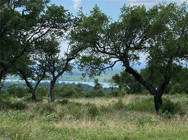 Lot 25 Lookout Mtn, Kingsland, TX 78639 (#4084152) :: First Texas Brokerage Company