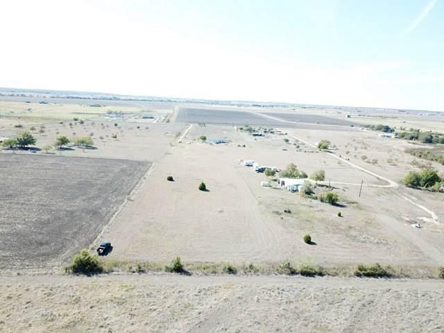 1598 County Road 324, Granger, TX 76530 (#4121193) :: Papasan Real Estate Team @ Keller Williams Realty