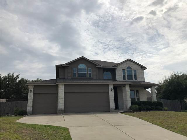 17903 Linkview Dr, Dripping Springs, TX 78620 (#4147324) :: The Perry Henderson Group at Berkshire Hathaway Texas Realty