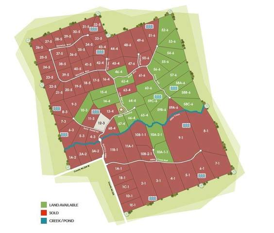 Tract 62 - 4 Cr 224, Briggs, TX 78608 (#4202205) :: Papasan Real Estate Team @ Keller Williams Realty