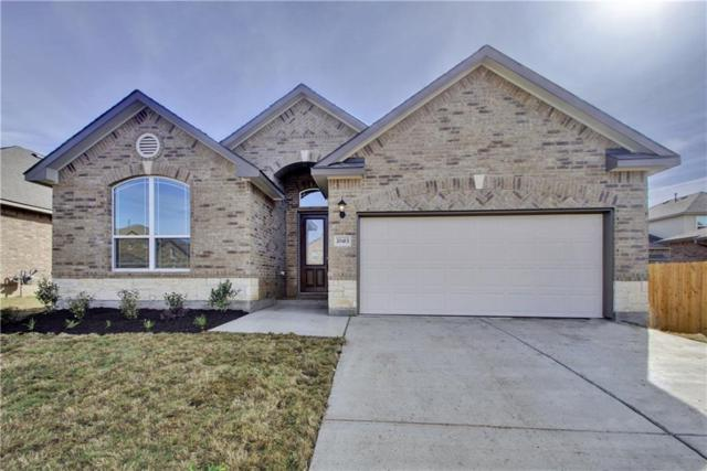 20413 Shellduck Dr, Pflugerville, TX 78660 (#4206106) :: Papasan Real Estate Team @ Keller Williams Realty