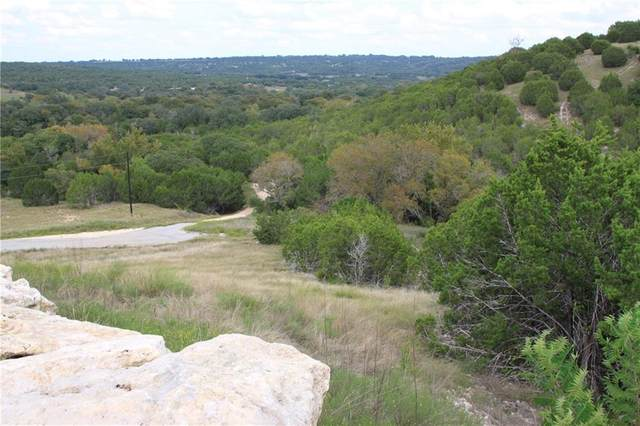 Lot 100 Saddle Ridge Dr, Bertram, TX 78605 (#4282991) :: Lancashire Group at Keller Williams Realty