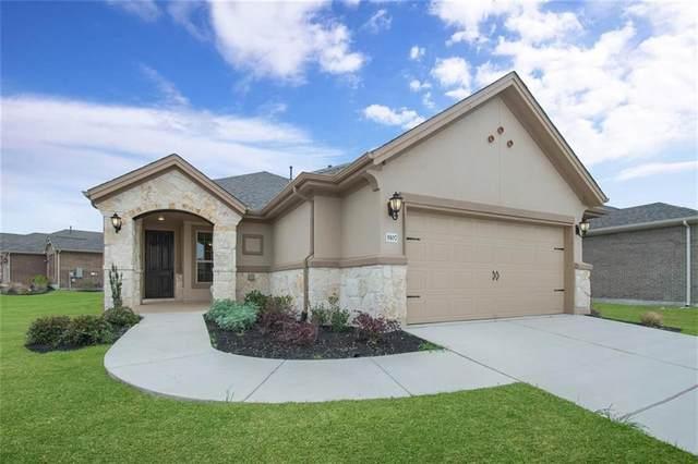 5107 Cassia Way, Round Rock, TX 78665 (#4297340) :: Watters International