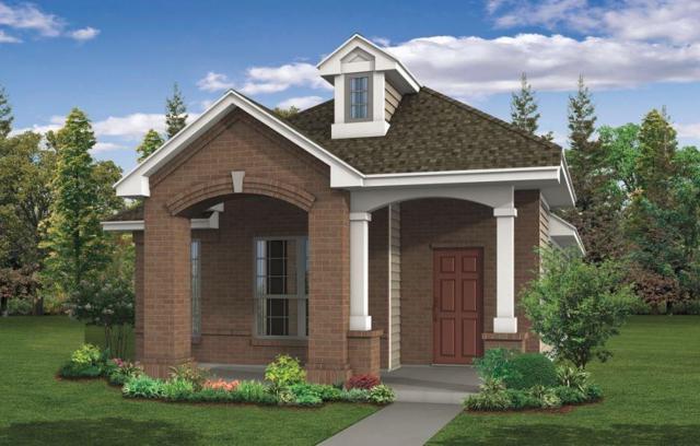 460 Spiny Lizard Ln, San Marcos, TX 78666 (#4369170) :: Ana Luxury Homes
