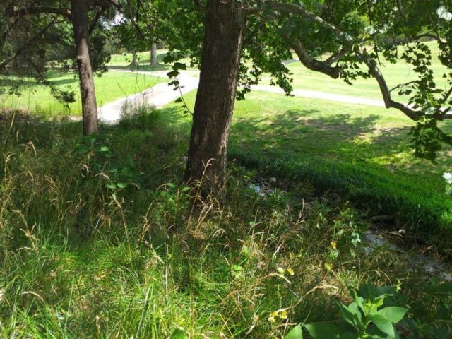 20707 Deep Creek, Lago Vista, TX 78645 (#4444516) :: The Gregory Group