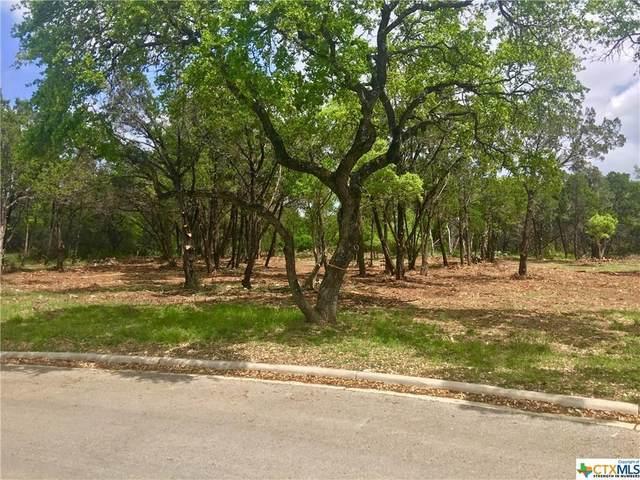 2303 Geneseo Oaks, New Braunfels, TX 78132 (MLS #4481735) :: Brautigan Realty