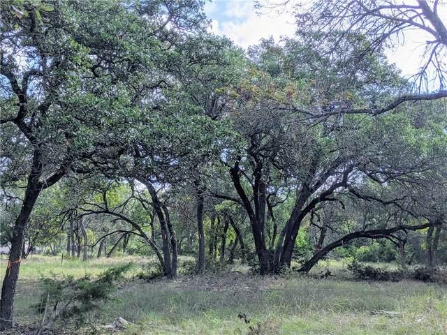 3100 Whitt Creek Trl, Leander, TX 78641 (#4509888) :: The Perry Henderson Group at Berkshire Hathaway Texas Realty