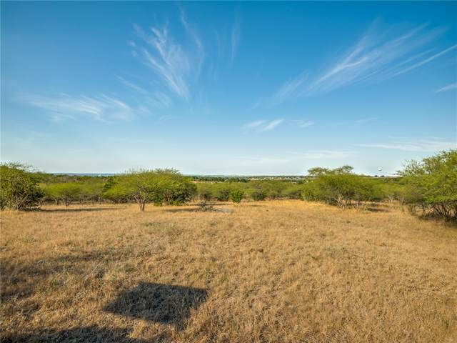 2272 Fm 1044, New Braunfels, TX 78130 (#4515022) :: The Perry Henderson Group at Berkshire Hathaway Texas Realty