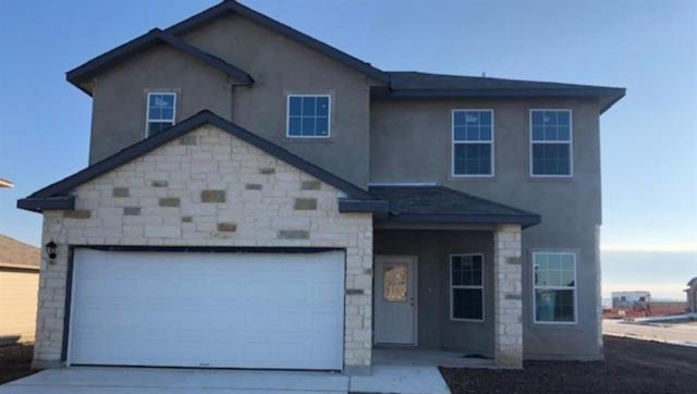 204 Dieter Drive, San Marcos, TX 78666 (#4758931) :: The Gregory Group