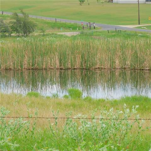 12.275 Ac County Road 422, Thrall, TX 76578 (#4809228) :: Papasan Real Estate Team @ Keller Williams Realty