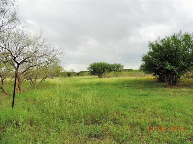 Lot 2 - 5.112 ac County Road 406, Taylor, TX 76574 (#4877647) :: The Perry Henderson Group at Berkshire Hathaway Texas Realty