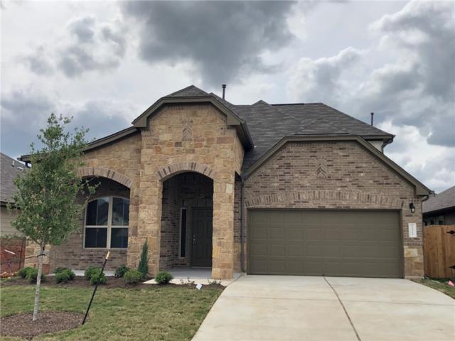 1321 Goldilocks Ln, Austin, TX 78652 (#4939839) :: Watters International