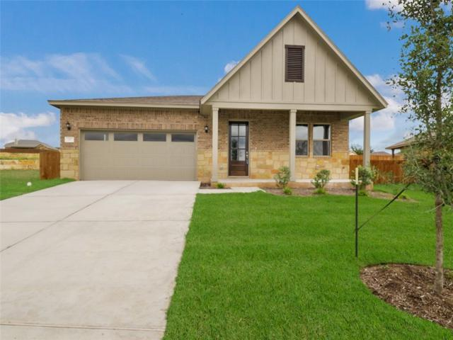 217 Terry Meadow Ln, Jarrell, TX 76537 (#4948578) :: The Heyl Group at Keller Williams