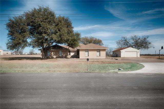 7375 County Road 110, Round Rock, TX 78665 (#5010507) :: Papasan Real Estate Team @ Keller Williams Realty