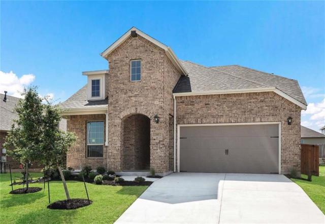 243 Windswept Way, Kyle, TX 78640 (#5022046) :: The Perry Henderson Group at Berkshire Hathaway Texas Realty